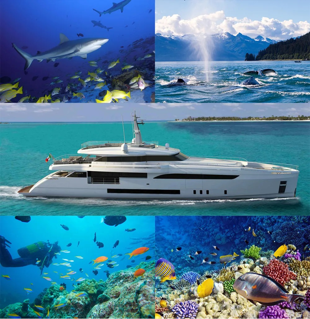 Eco-friendly Yacht Charters